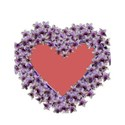 purple heart frame_edited-3