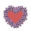 purple heart frame_edited-3