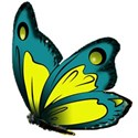 blue butterfly - Copy