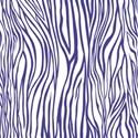 PP5-zebra_mikki