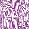 PP6-zebra_mikki