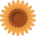 bos_ab_sunflower