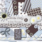 White Daisy Kit