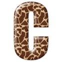 c2_giraffe_mikki