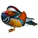 EM Duck