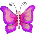 1 pink butterfly