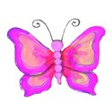 12 bright pink butterfly