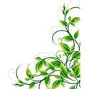 Leaf 2 corner