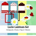 ladybugs cover