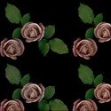 pink rose on black emb