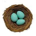 nest eggs 4