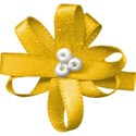 bow flower yellow