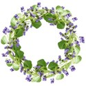 wreath violets