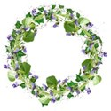violet ivy wreath