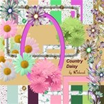 Country Daisy