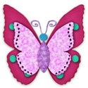 pink and turquoise butterfly