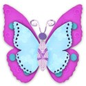 turquoise and purple butterfly