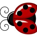 kitc_abc_ladybug