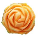 cantaloupe rose