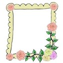 peach rose frame right