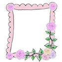 pink rose frame right