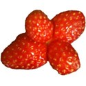 strawberries cluster