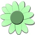 greemdaisygreendaisy