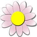 redfloweryellowdaisy