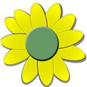 yellowflowergreendaisy