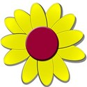 yellowredflowerdaisy
