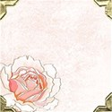 pink rose scrapbook page copy