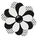 flower2black