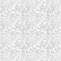 BackGround White Lace