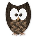 mini brown owl