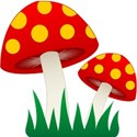 mushrooms2