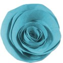flower2blue