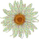 B flower 2