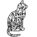 cat4sh