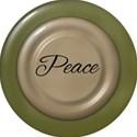 lisaminor_peacejoylove_brad_peace
