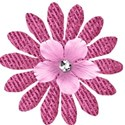 flower 2 pink