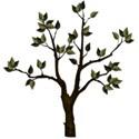 ddd_campin_tree