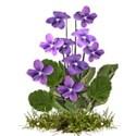 chey0kota_CC Violet_Element (28)