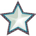 lisaminor_celebrateamerica_star_b
