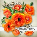 chey0kota_CU Poppies_Coverplain [blog preview]