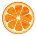 jennyL_citrus_summer_orange