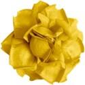 SCD_Allaire_flower2