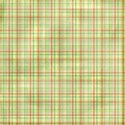 KTeague_vcactionholiday_2ps_plaid