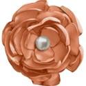 kitc_randr_flowerorange