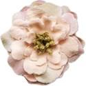 pamperedprincess_tresjolie_flower1 copy