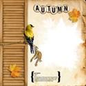 chey0kota_Autumn_QP (1)